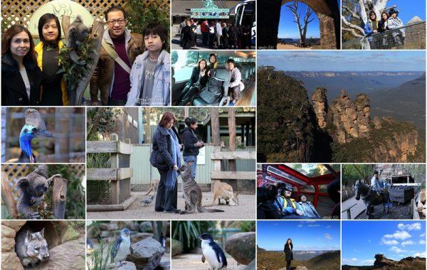 """""""9 วันในซิดนีย์"""" ตอน 6 Featherdale wildlife park และ Scenic World Blue Mountains @ ออสเตรเลีย"""